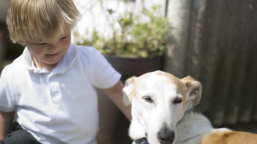 Young boy with blonde hair sat in garden petting white dog by his side.