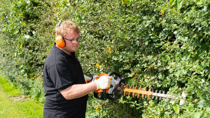 Man wearing headphone, using a hedgecutter to cut hedge outside.